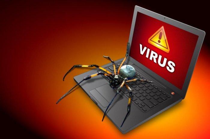 Как защитить сайта от вирусов?
